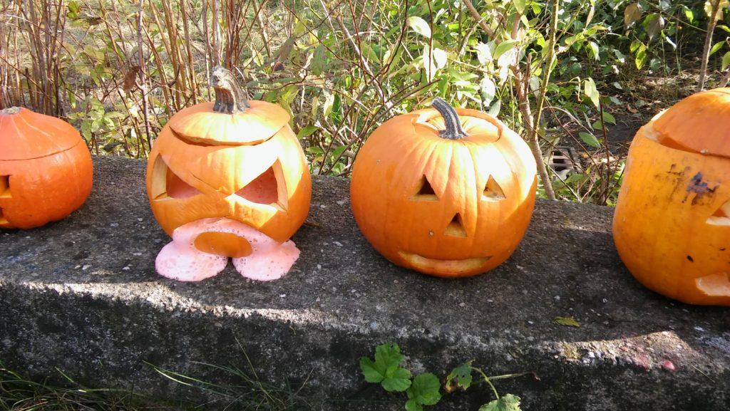 Halloweenský pokus v kroužku PŘÍRODNÍK - video !!!