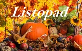 listopad-3-290x180