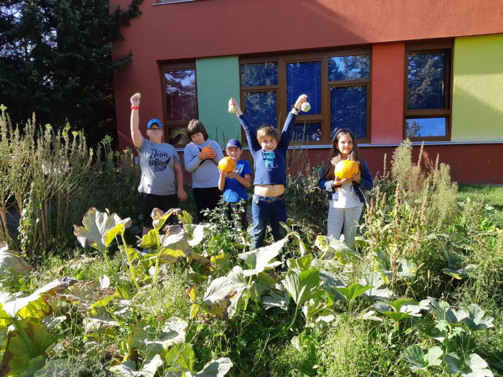 Poklady naší zahrady