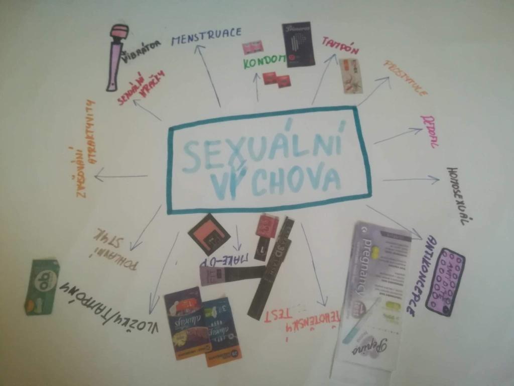 Sexuální výchova